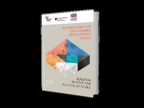 Entreprise-et-sustainable-devt-goals-1024x768